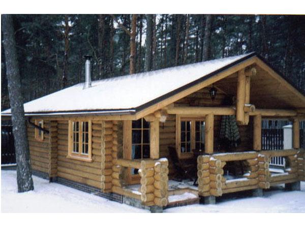 Готовые проекты дачных домов скачать